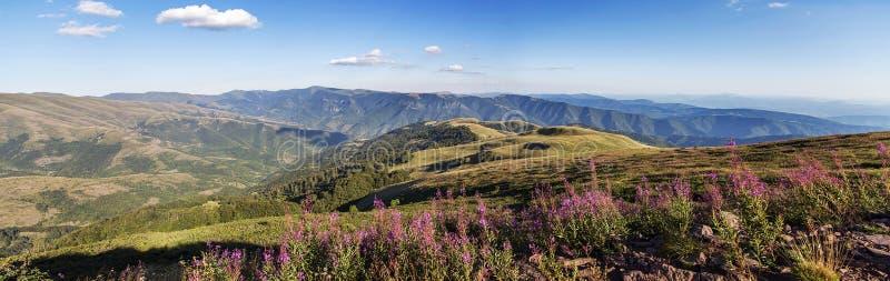 Stara Planina góra w Serbia fotografia royalty free