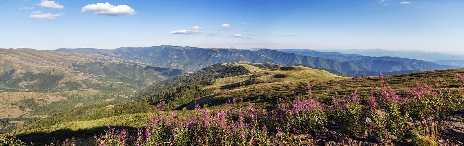 Stara planina mountain in Serbia. Detail of the Stara planina mountain in Serbia royalty free stock photography