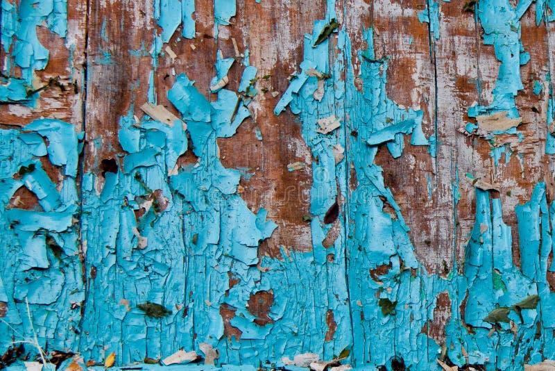 Stara podława błękitna farba na drzewie zdjęcie stock