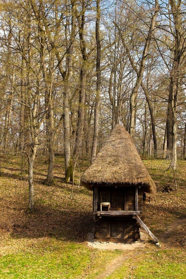 Drewniana buda w lesie obraz royalty free