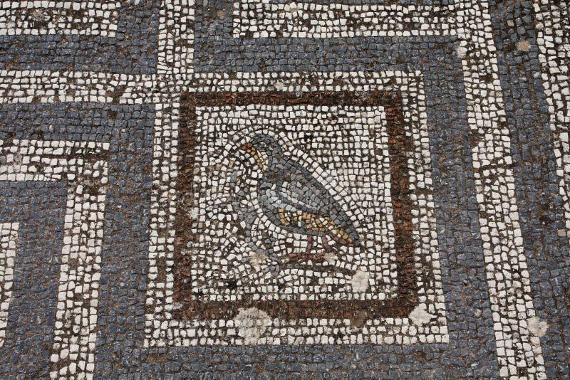 Stara rzymska mozaiki podłoga w Kosa mieście zdjęcia royalty free