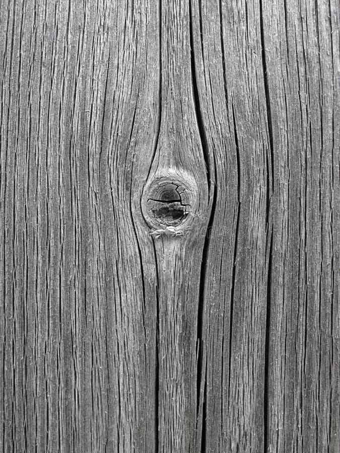 stara struktura drewniana obraz royalty free