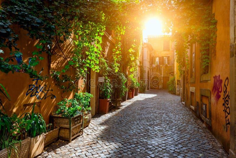 Stara ulica w Trastevere, Rzym fotografia royalty free