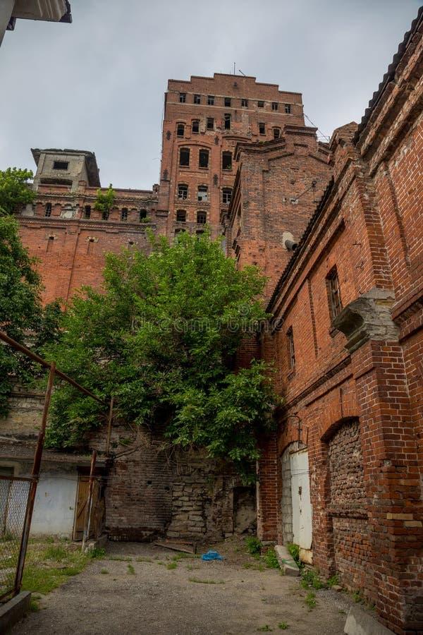 Stara zaniechana czerwonej cegły zbożowa winda zdjęcie stock