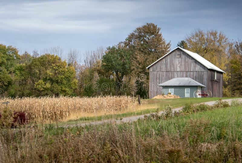 Staranna mała stajnia wzdłuż strony kukurydzany pole obraz stock