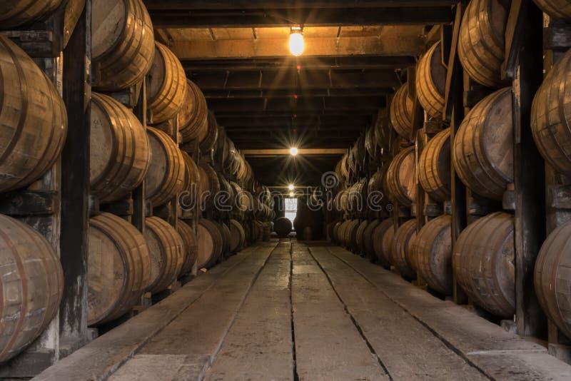 Starburst auf Lichtern im Bourbon-Altern-Lager stockfotos