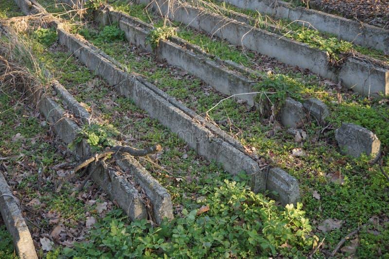 Stare betonowe struktury przez których kiełkował trawa zdjęcia royalty free