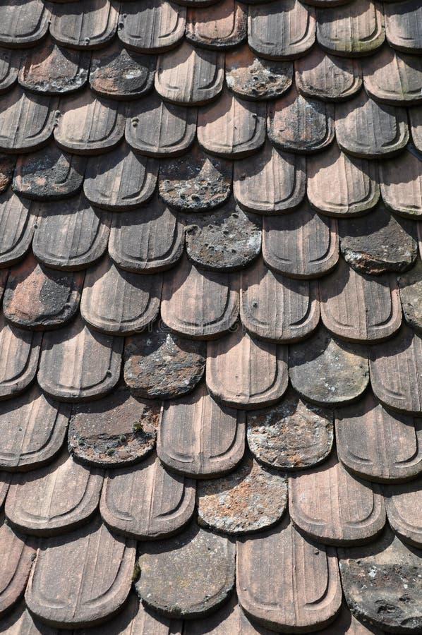 Stare bobra ogonu niecki płytki zdjęcia stock