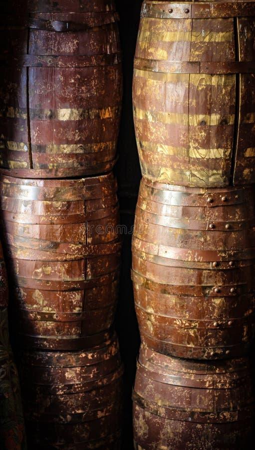Stare dąb baryłki obraz stock