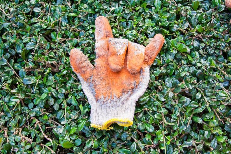 Stare gumowe rękawiczki dla miłości zdjęcie royalty free