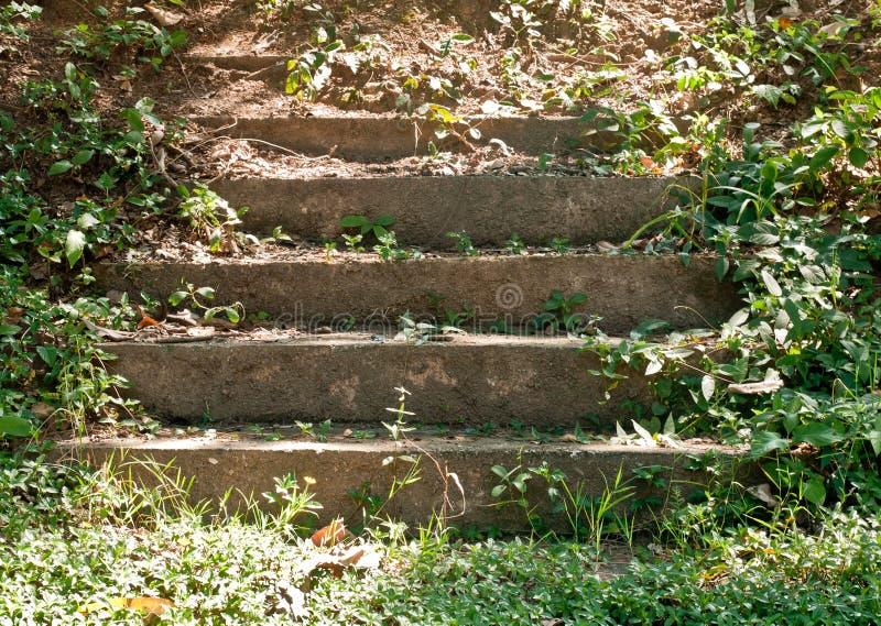 stare schody obrazy royalty free
