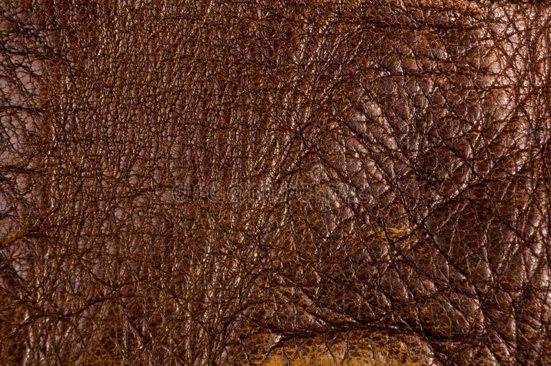 Starego rocznika prawdziwego mi?kkiego br?zu tekstury rzemienny t?o, odg?rna warstwa z pores i narysy, makro-, w g?r? obraz stock
