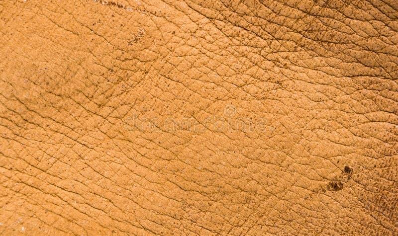Starego rocznika prawdziwego mi?kkiego br?zu tekstury rzemienny t?o, odg?rna warstwa z pores i narysy, makro-, w g?r? fotografia royalty free