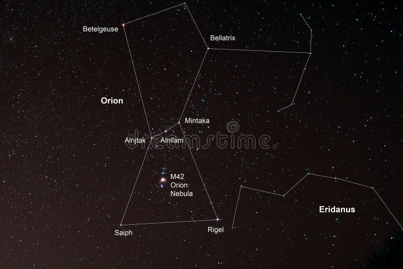 Starfield met Orion en Orion Nebula stock fotografie