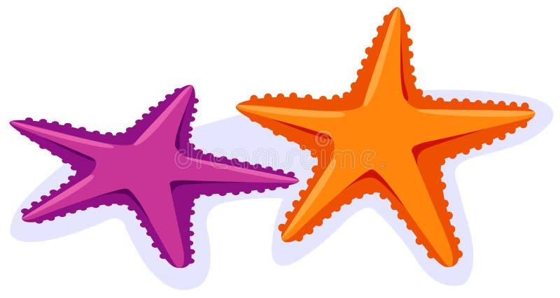 starfish иллюстрация вектора