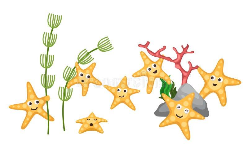 Starfish stock abbildung