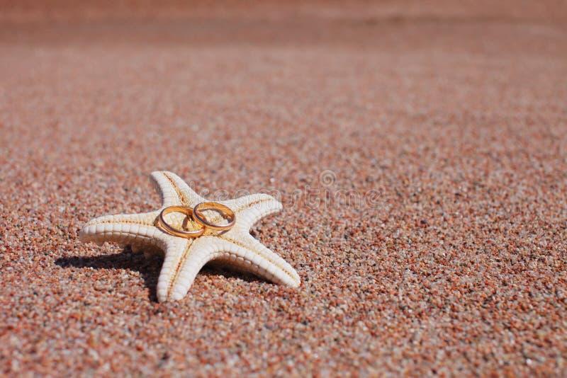 Starfish on the beach stock image Image of wedding ring 53389931