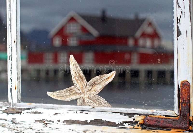 Starfish behind the old Window stock photo