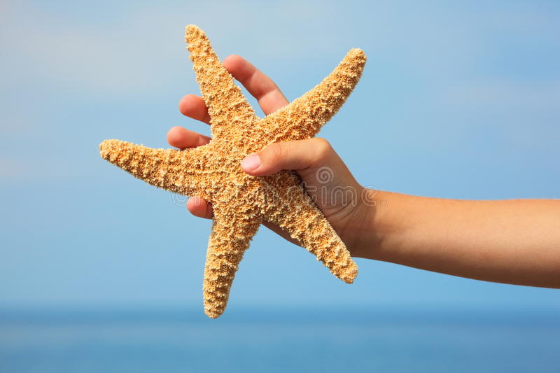 Starfish in child's hand. focus on wrist royalty free stock photography