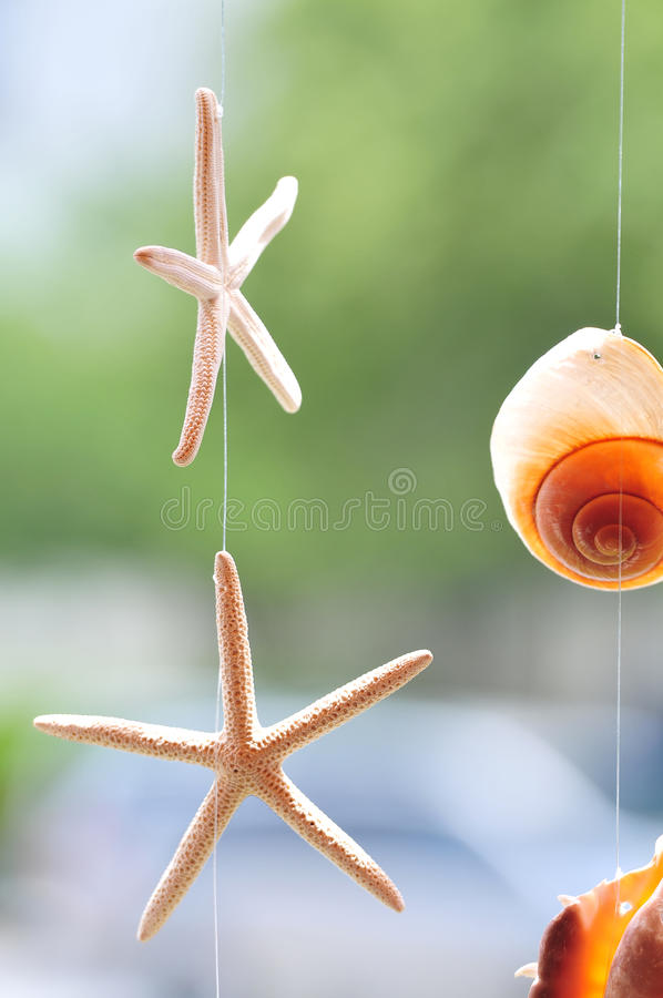 Starfish decoration stock photos