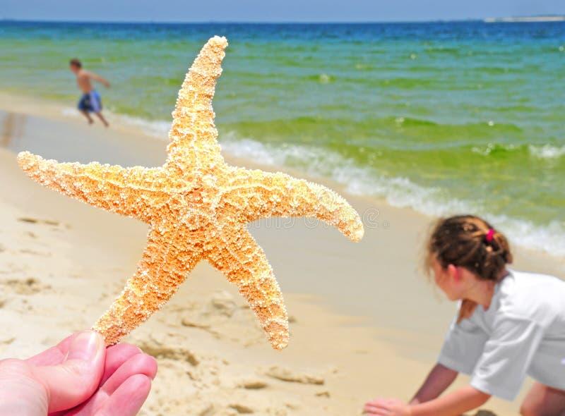 Starfish e miúdos na praia imagens de stock royalty free