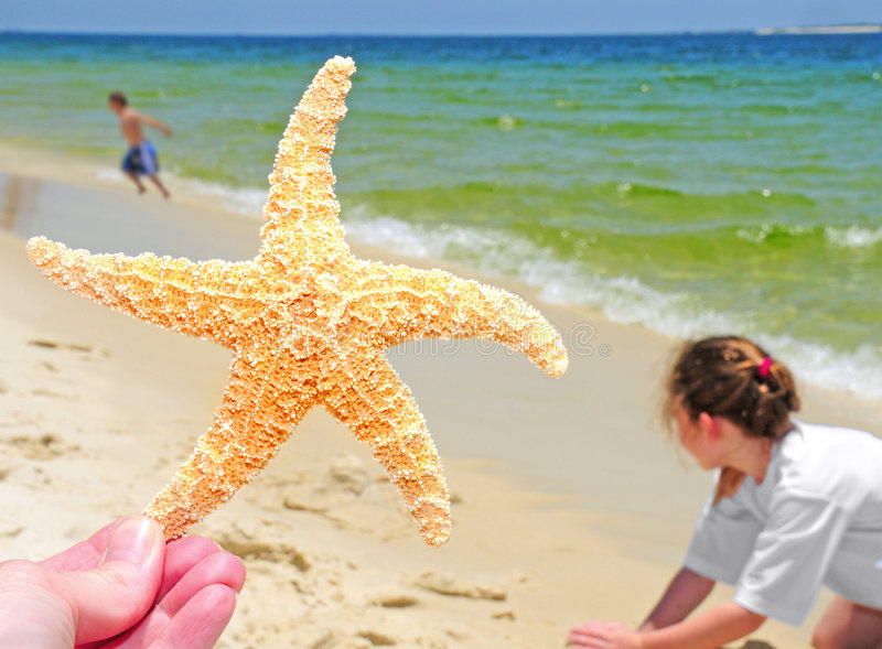 Starfish and kids on beach royalty free stock images