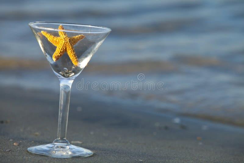 Starfish Martini lizenzfreie stockfotos