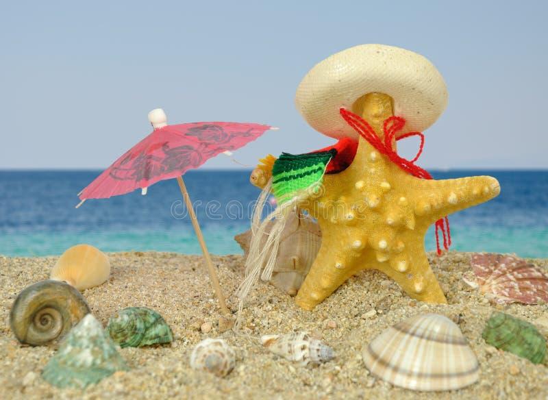 Starfish mit Sombrero- und Sonneregenschirm stockfoto