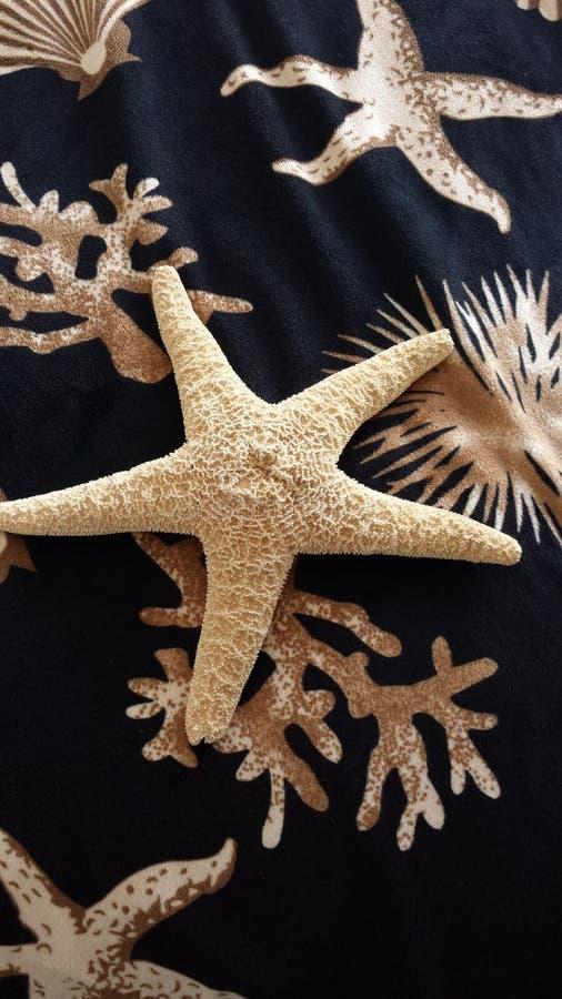 Starfish on Nautical Throw stock photos