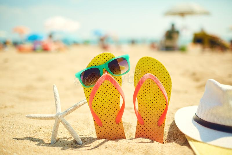 Starfish near flip flops and sunglasses on beach royalty free stock image