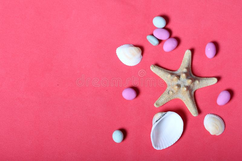 Starfish, Oberteile und farbige Kiesel Lüge auf dem Hintergrund der korallenroten Farbe stockfoto