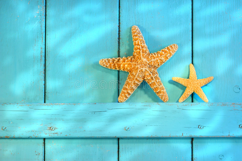 Download Starfish On An Old Rustic Door Stock Photo - Image: 5449646
