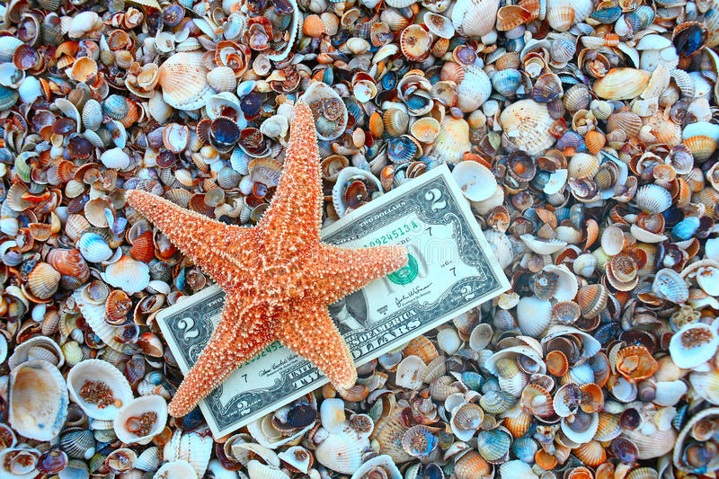 Starfish over two dollar banknote on coast covered with seashell. S, shot with copyspace royalty free stock image