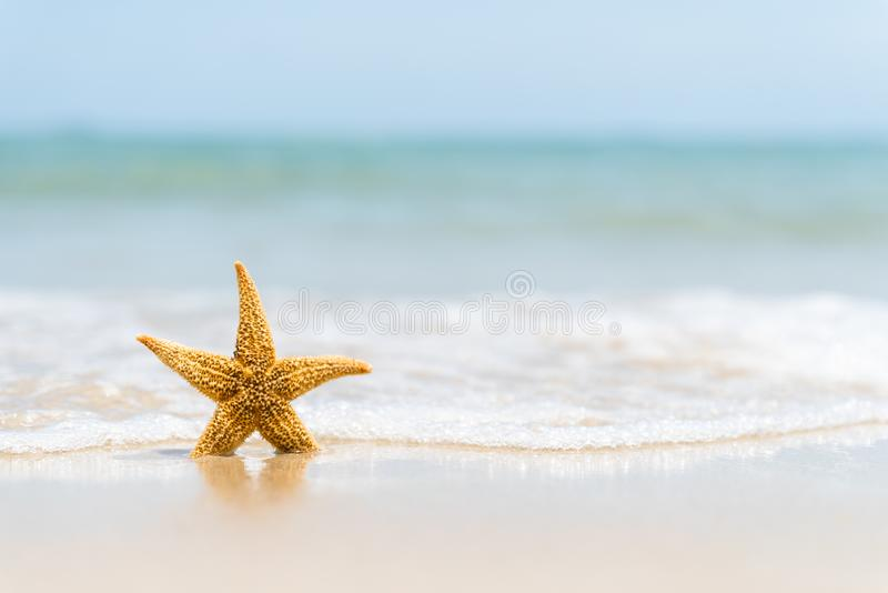 Starfish on sand beach, blue sky and soft wave background. Summer holiday and vacation concept stock photography