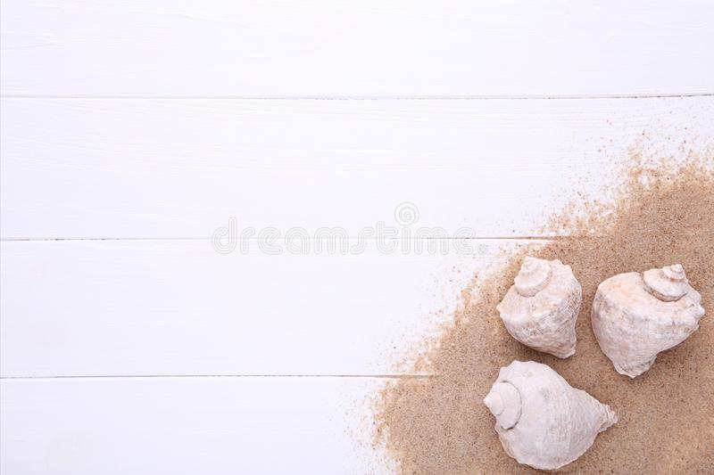 Starfish and seashells with sand on a white wooden background. Summer concept stock images