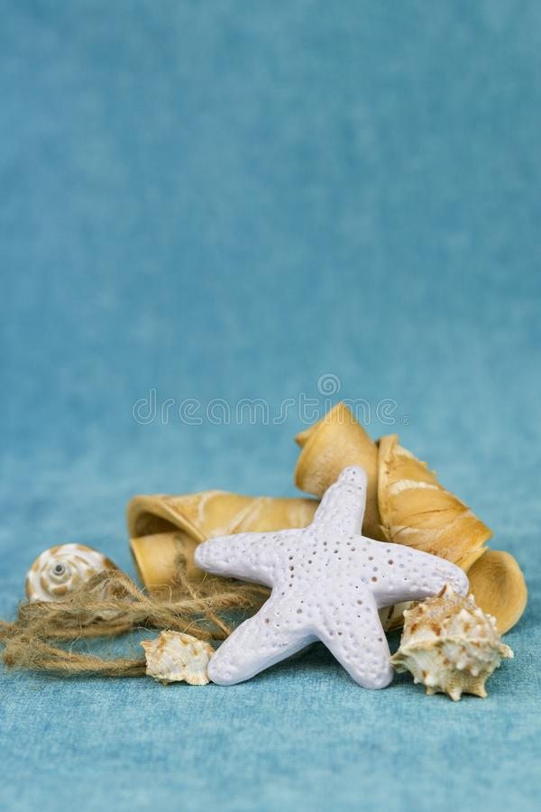 Starfish and seashells royalty free stock image