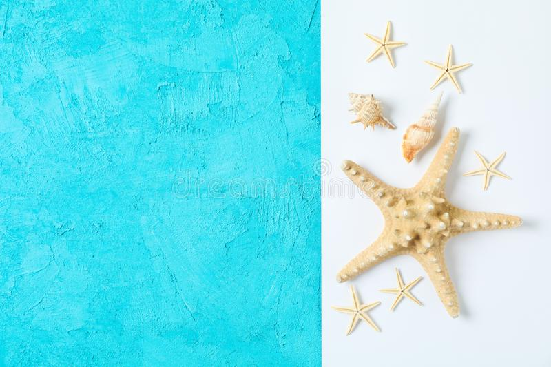 Starfish and seashells on two tone background, space for text and top view. Summer vacation. Backdrop stock photography