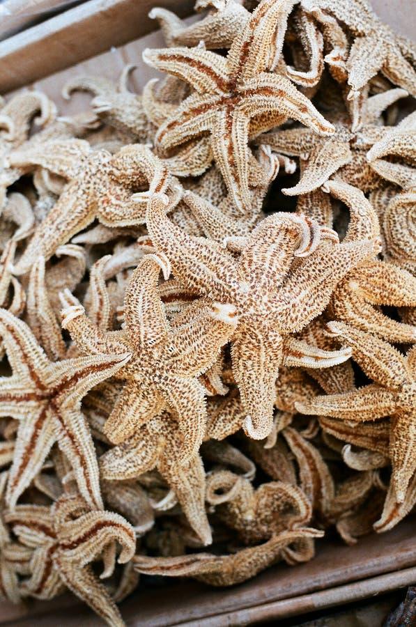 Starfish secados em uma loja da medicina de chinatown imagens de stock