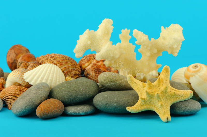Starfish and set of objects of the sea underwater royalty free stock photo