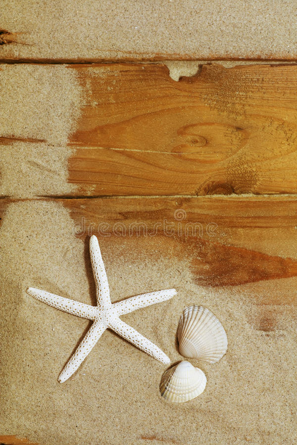Starfish and shells on wood stock photos