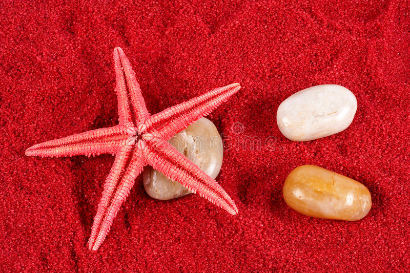 Download Starfish And Stones On The Red Sand Stock Image - Image of beauty, colourful: 928507