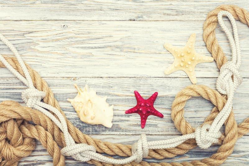 Starfish und Muschel auf helle Bretter lizenzfreies stockbild
