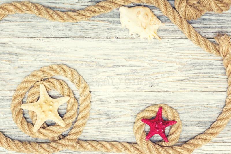 Starfish und Muschel auf helle Bretter lizenzfreies stockfoto
