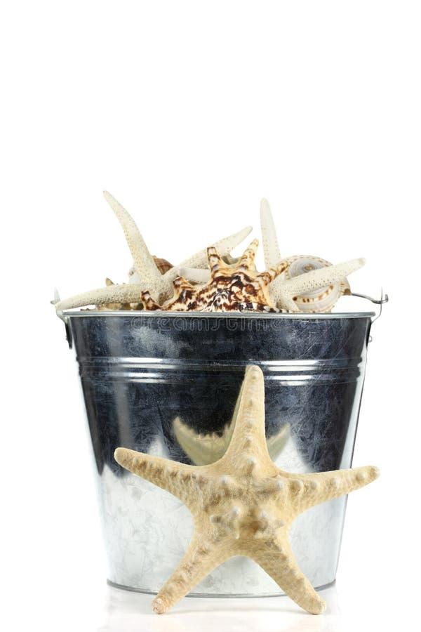 Starfish-und Seeshells in der Stahlstrand-Wanne stockbild