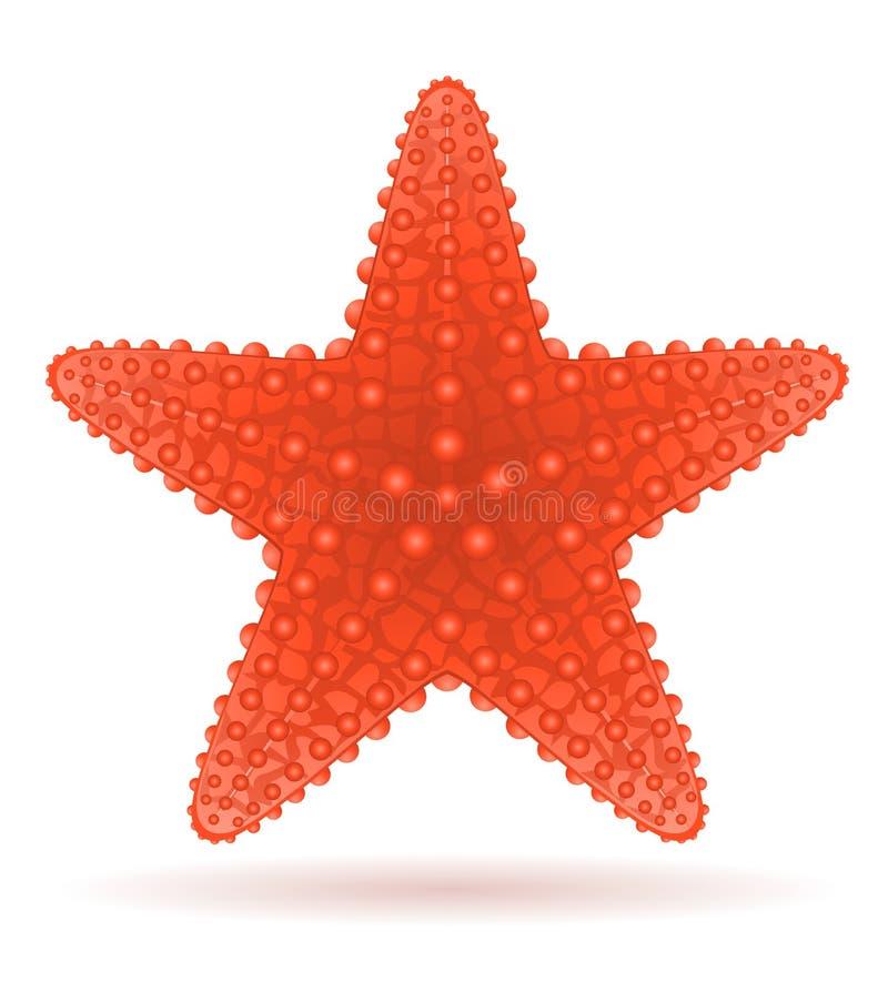 starfish vector illustration stock vector illustration of seafish rh dreamstime com starfish vector drawing starfish vector download