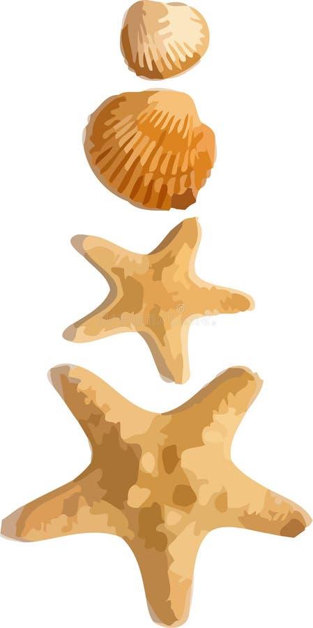 Starfishes e escudos do vetor imagem de stock royalty free