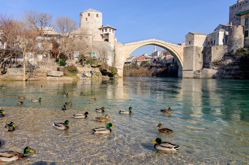 Stari Most Old Bridge panaroma landscape with wild ducks city of Mostar in Bosnia.  royalty free stock photography