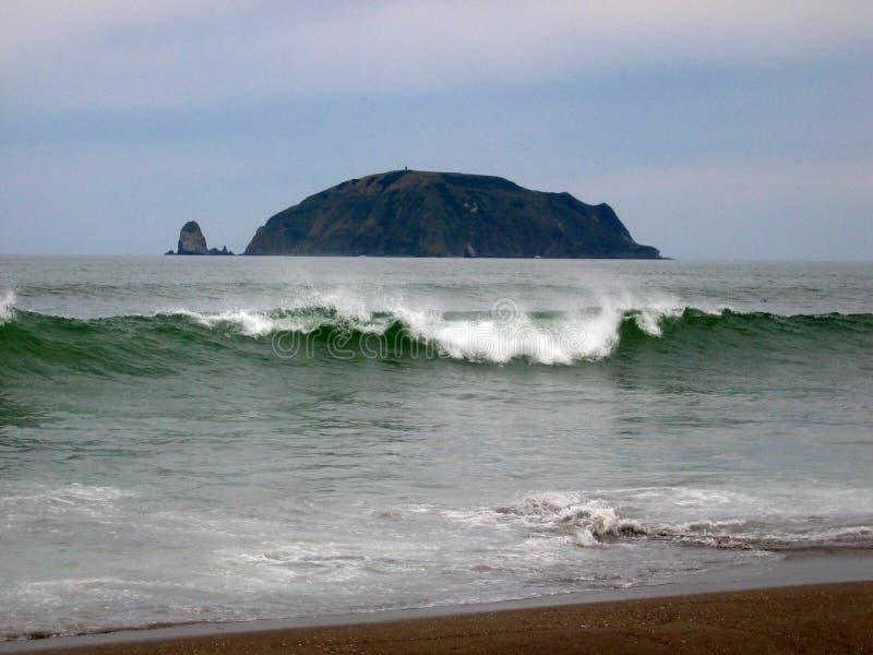 Download Starichkova Island stock photo. Image of beach, scenery - 1991108