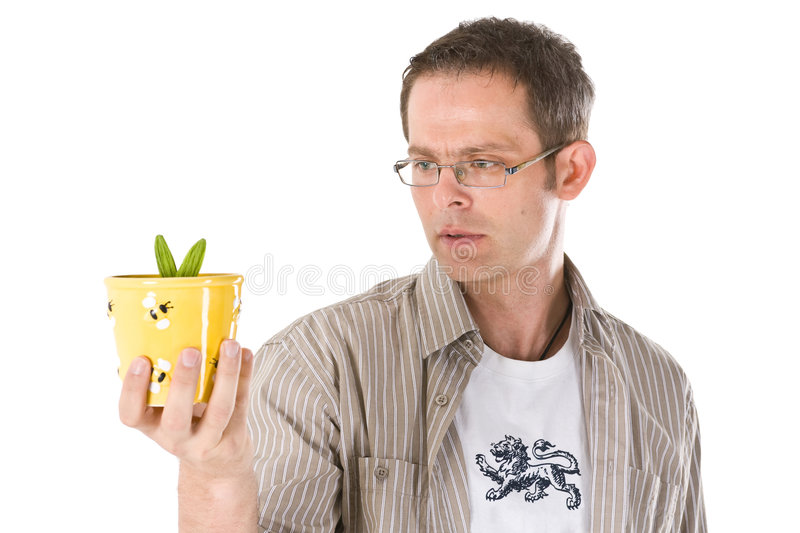 Staring at a Plant. A man looking at a small plant in Hamlet style, on a white background stock image