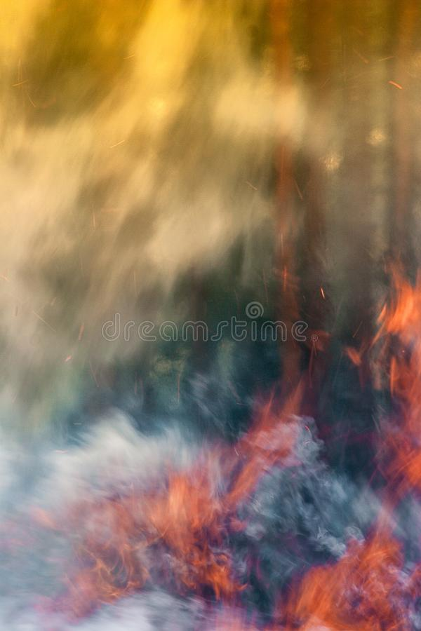 Stark brand i skogen, rök, smog, brände forestn royaltyfri bild